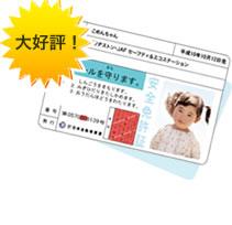 pics_chi_index_03