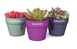 planter_pot