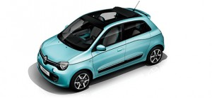 twingo_intens_canvas_top_pc